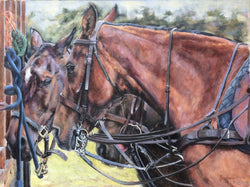 Trio..Original Painting By Jane Braithwaite/Equine Art/Horse Racing.. Equine Canine Art is an online sales platform for horse art and dog art.