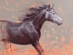 Iron Grey-Fine Art Painting By Catherine Ingleby/Equine Art/Horse..... Equine Canine Art is an online sales platform for horse art and dog art.