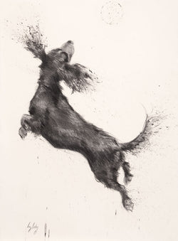 Jump For Joy-Fine Art Print By Catherine Ingleby/Canine/Dog-Spaniel... Equine Canine Art is an online sales platform for horse art and dog art.