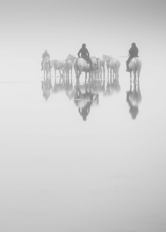 Reflection VI-Fine Art Photograph By Carys Jones/Equine Art/Horses.... Equine Canine Art is an online sales platform for horse art and dog art.