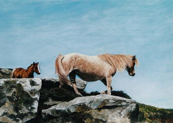 Sea Air-Claire verity Equine Canine Art/Fine Art Painting/Mare & Foal. Equine Canine Art is an online sales platform for horse art and dog art.