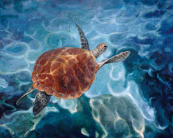 Green Turtle By Claire Verity/Equine Canine Art/Fine Art Paintings...  Equine Canine Art is an online sales platform for horse art and dog art.