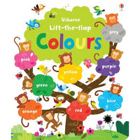 Usborne Lift the Flap - Color