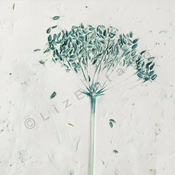 'Cowparsley' gift card