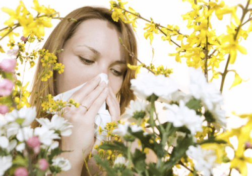 10 Ways to Survive Allergy Season