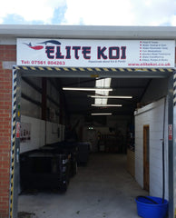 Elite Koi Minutes from Grimsby Town Center & A180