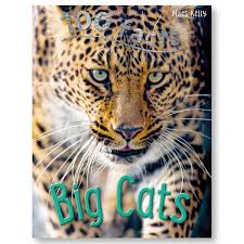 Image of 100 Facts Big Cats