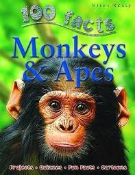 Children's Books Outlet |100 Facts Monkeys and Apes