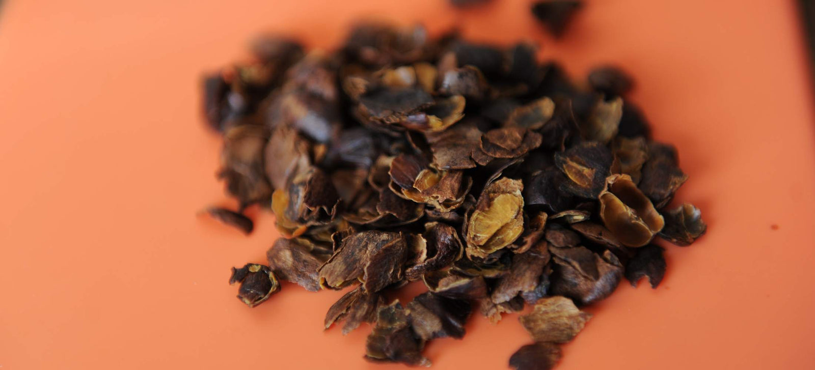 What Is Cascara and Why Is It Everywhere?