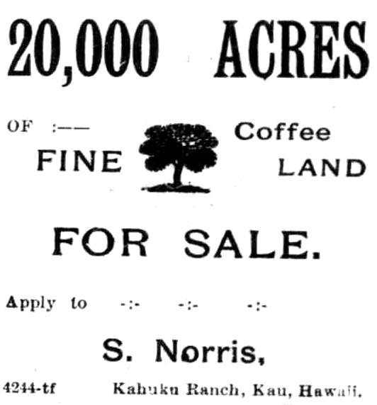 Hawaiian coffee land for sale last century