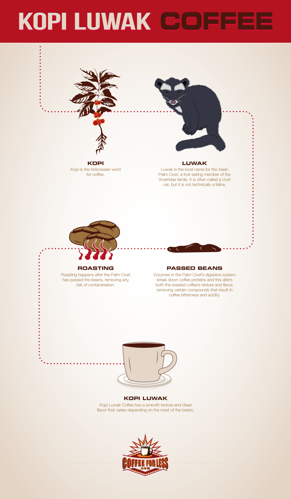 Kopi Luwak is a one-of-a-kind coffee that's highly sought after. Learn the secrets of this renowned beverage through CoffeeForLess infographics.