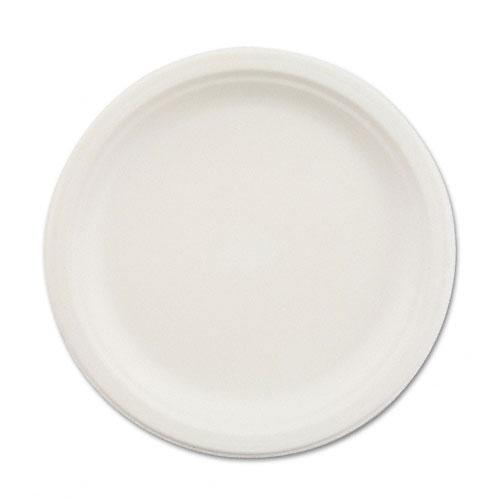 Chinet 9 Inch White Paper Shallow Plates 500ct