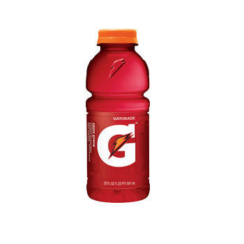 Gatorade Fruit Punch 24 20oz Bottles