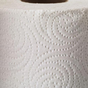 Georgia Pacific Perforated Paper Towel Rolls 85 Sheets 30ct Case