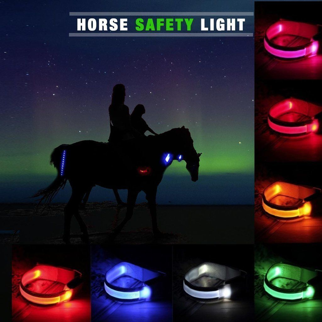 Lot de 4 Bracelets LED pour Cheval - VentesFlashFrance
