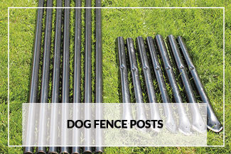 Dog Fence Posts