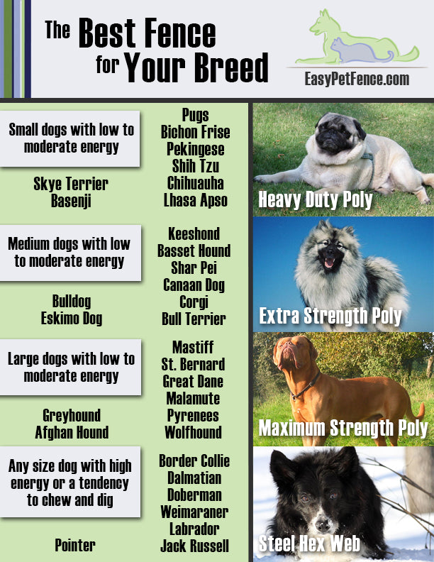 Dog Fence Recommendation Chart Easypetfence