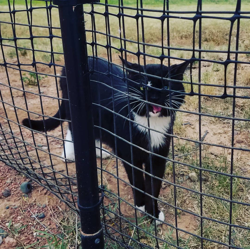 6' x 100' Kitty Corral Cat Fence System