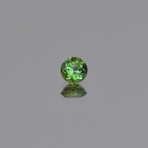 0.63ct Round Green Tanzanite