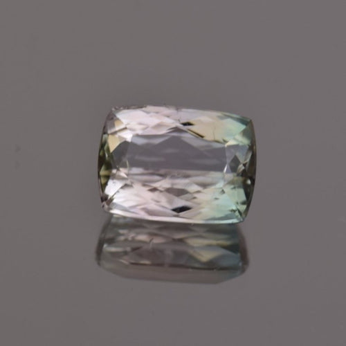 7.40ct Cushion Bi-Color Tourmaline