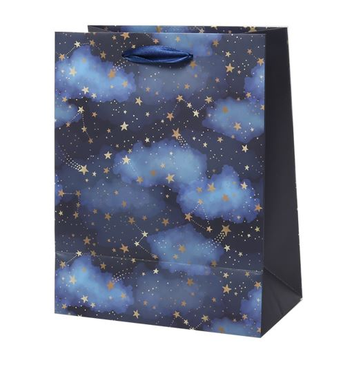 Medium Gift Bag - Starry Night