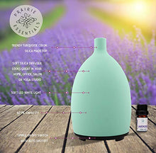 Turquoise Silica Essential Oils Diffuser, 60ml, with 5ml Bottle of Lavender