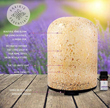 Hand Blown Glass Cylinder Essential Oils Diffuser, 120ml, with 5ml Bottle of Lavender