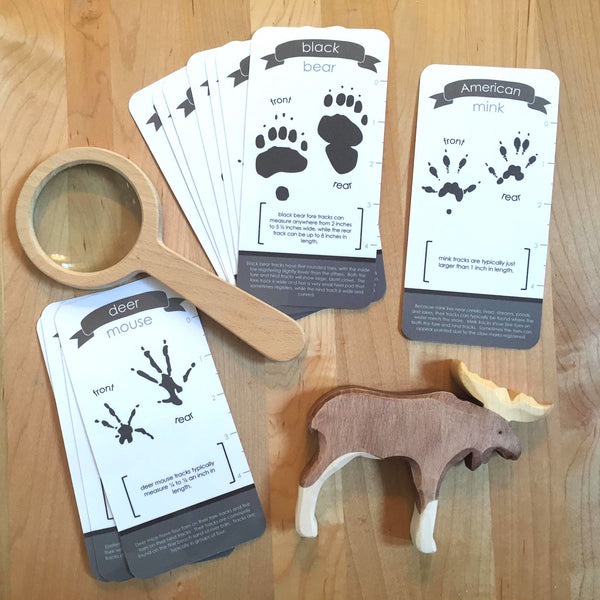 Animal Track Identification Card Set