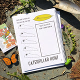 Exploring Butterflies Curriculum