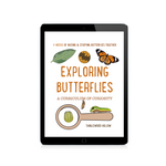 Exploring Butterflies: A Curriculum of Curiosity