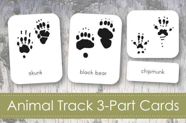 Animal Track 3-Part Cards