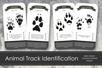 Animal Track Identification Cards