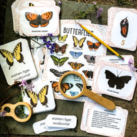 Exploring Butterflies: Companion Materials