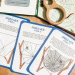 Spider Web Formation Card Set