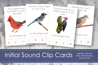 Bird Initial Sound Clip Cards