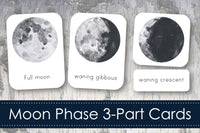 Moon Phase 3-Part Cards