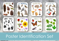 Identification Poster Set