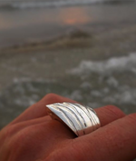 Tiger Shark Ring