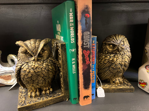 Golden owl bookends holding up some books