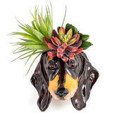 Dachshund Head Sconce Ceramic Dog Wall Planter with Flowers in | Happy Piranha