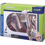 Giraffe Anatomy - 3D Anatomical Model in its Packaging | Happy Piranha