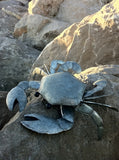 Large Colin The Crab Metal Ornament at the beach  | Happy Piranha
