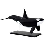 Orca Anatomy - 3D Anatomical Model Side View | Happy Piranha