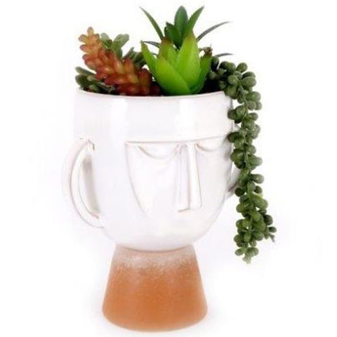 Pagan Head Succulent Planter With Artificial Plants | Happy Piranha
