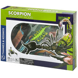 Scorpion Anatomy - 3D Anatomical Model in Packaging | Happy Piranha