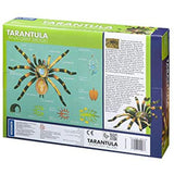 Tarantula Spider Anatomy - 3D Anatomical Model in Packaging Back of Box | Happy Piranha