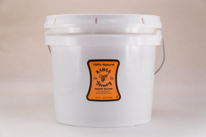 100% Pure, Raw, Natural Arizona Honey | Gallon Bucket-Desert Bloom