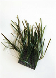 Product image-Pangea America synthetic neptune grass cluster