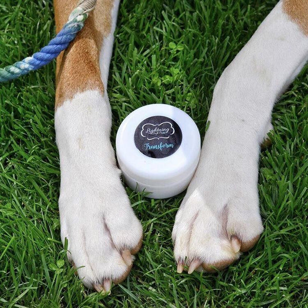 Transform 'Sweet Orange' Paw Cream