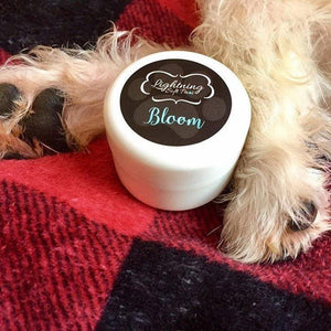 Bloom 'Jasmine' Paw Cream-Lightning Soft Paws